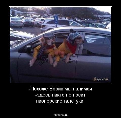 https://humorial.ru/images/dems/1/dem_1425.jpg