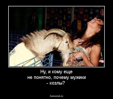 итоге, смешные открытки про мужиков козлов фото сверху интересная
