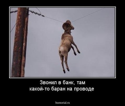 http://humorial.ru/images/dems/103/dem_103142.jpg