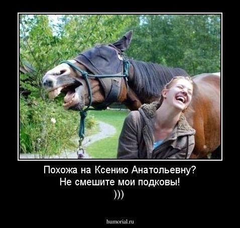 Смешные фотографии джека воробья это