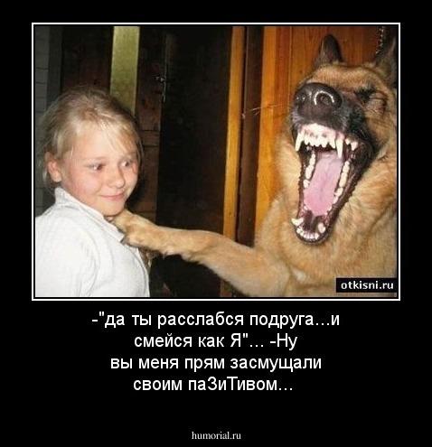 http://humorial.ru/images/dems/12/dem_12839.jpg