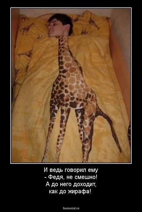 Анекдот Про Жирафу