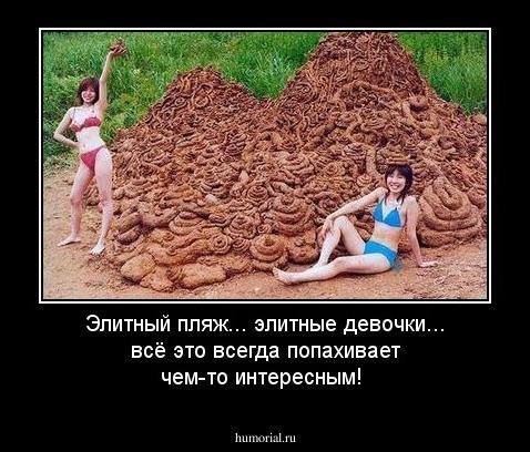 Снимать проститутку в зеленограде за 1000 р