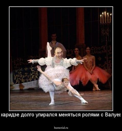 Демотиваторы для балерины