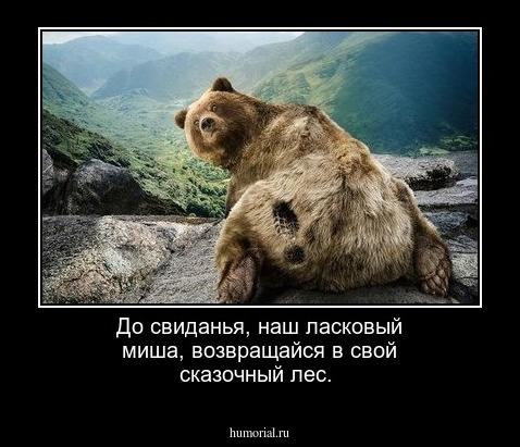 Порошенко підписав закон про перейменування УПЦ (МП) - Цензор.НЕТ 9371