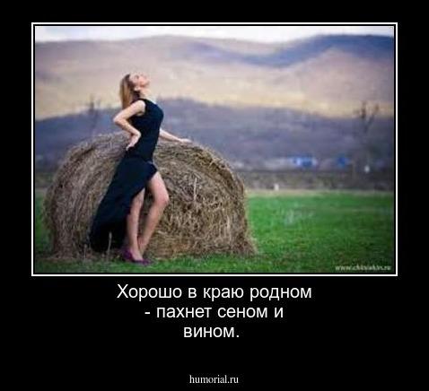Стих хорошо в краю родном пахнет сеном и