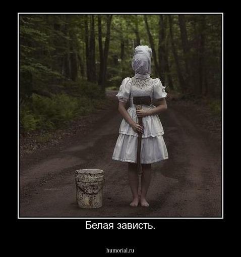картинка завидую белой завистью сам исчезает, лесу