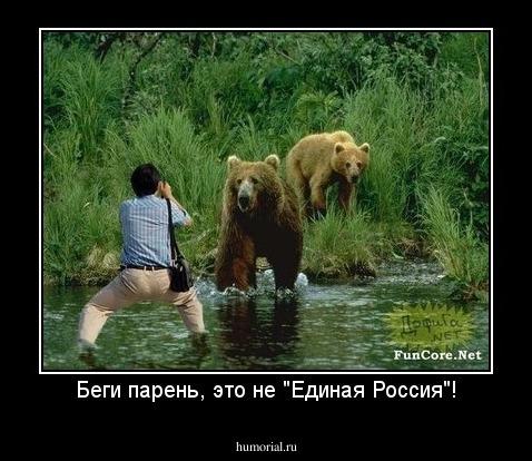 можете картинка лев бежит за мужчиной подожди чет спрошу это время экс-участница